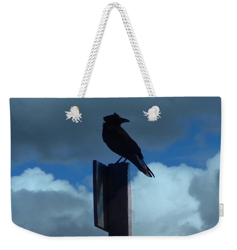 Sky Weekender Tote Bag featuring the photograph Raven Checking The Wind by Jacklyn Duryea Fraizer