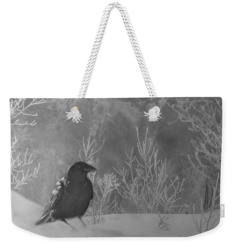 Raven Weekender Tote Bag featuring the photograph Ravenwood by Sue Capuano