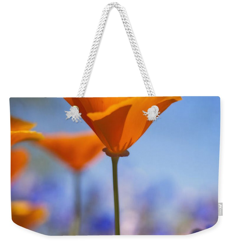 Poppies Weekender Tote Bag featuring the photograph Reach For The Sky by Saija Lehtonen