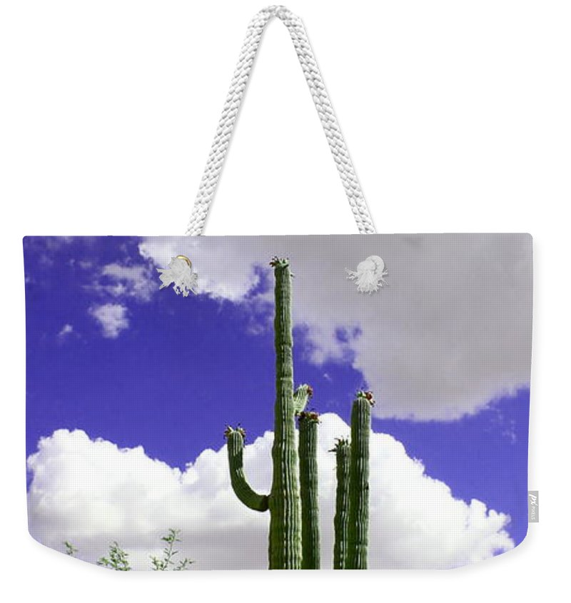 Beautiful Day Weekender Tote Bag featuring the photograph Reach Out And Touch The Sky by Kume Bryant