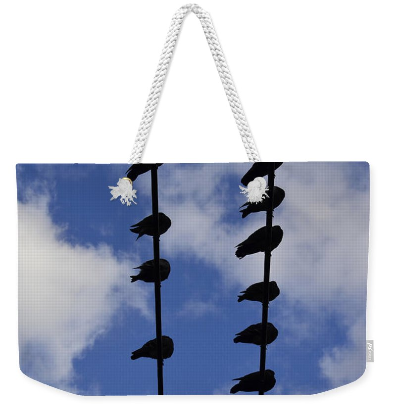Jerry Cordeiro Weekender Tote Bag featuring the photograph Reach To Bottoms by The Artist Project