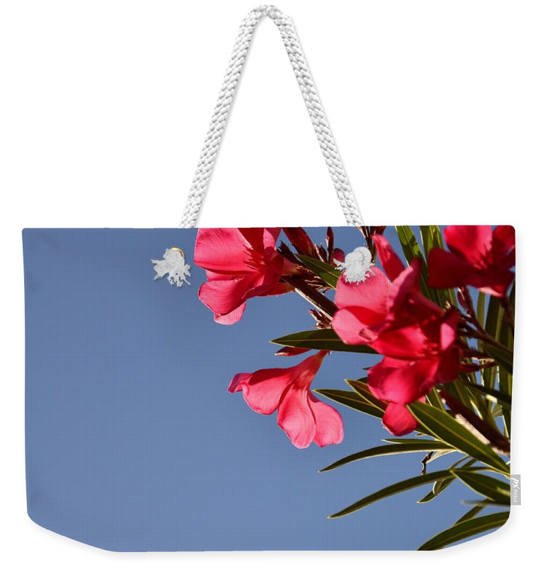 Seasons Weekender Tote Bag featuring the photograph Reaching Out 30016 by Jerry Sodorff