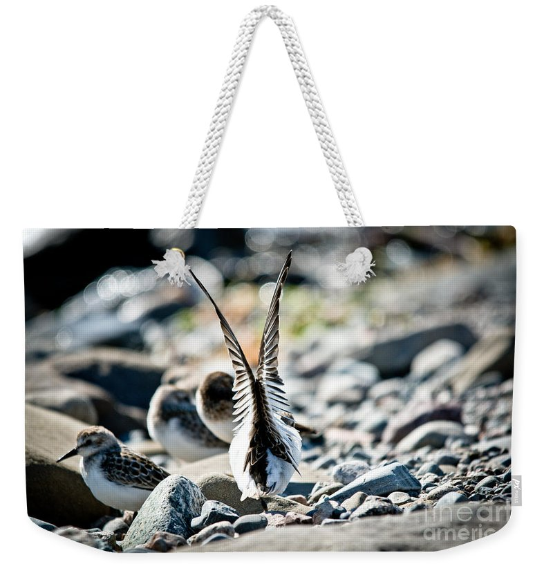 Weekender Tote Bag featuring the photograph Ready For Lift Off by Cheryl Baxter