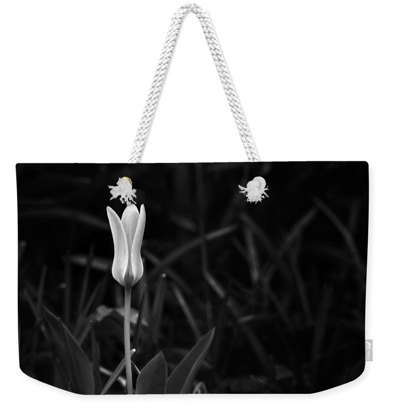 White Weekender Tote Bag featuring the photograph Reborn by Scott Norris