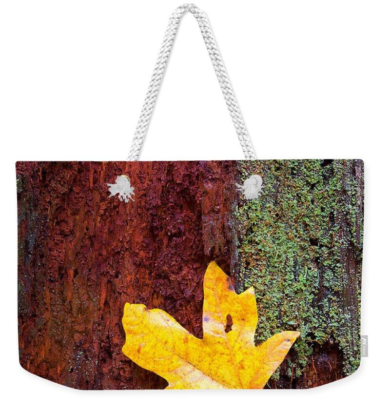 Autumn Leaves Weekender Tote Bags