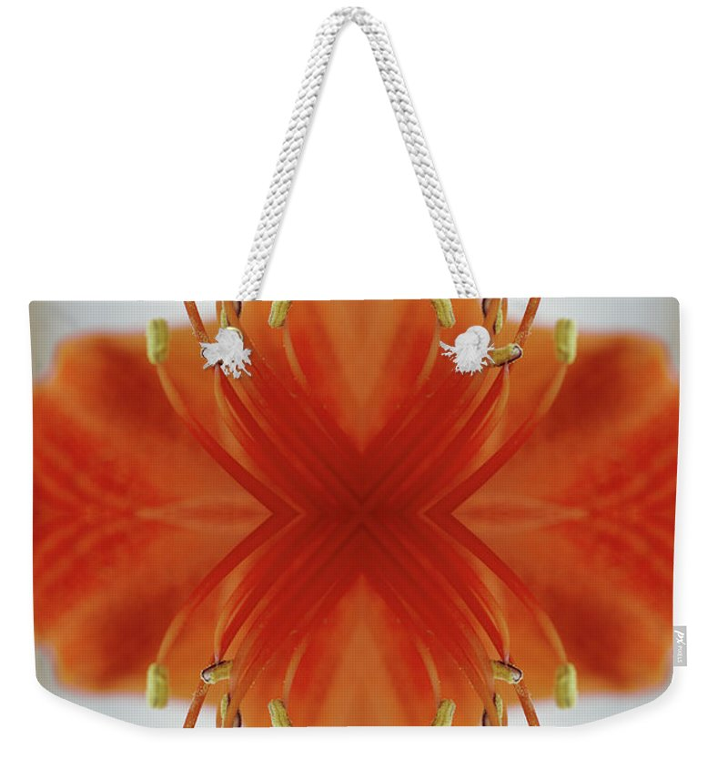 Tranquility Weekender Tote Bag featuring the photograph Red Amaryllis Flower by Silvia Otte
