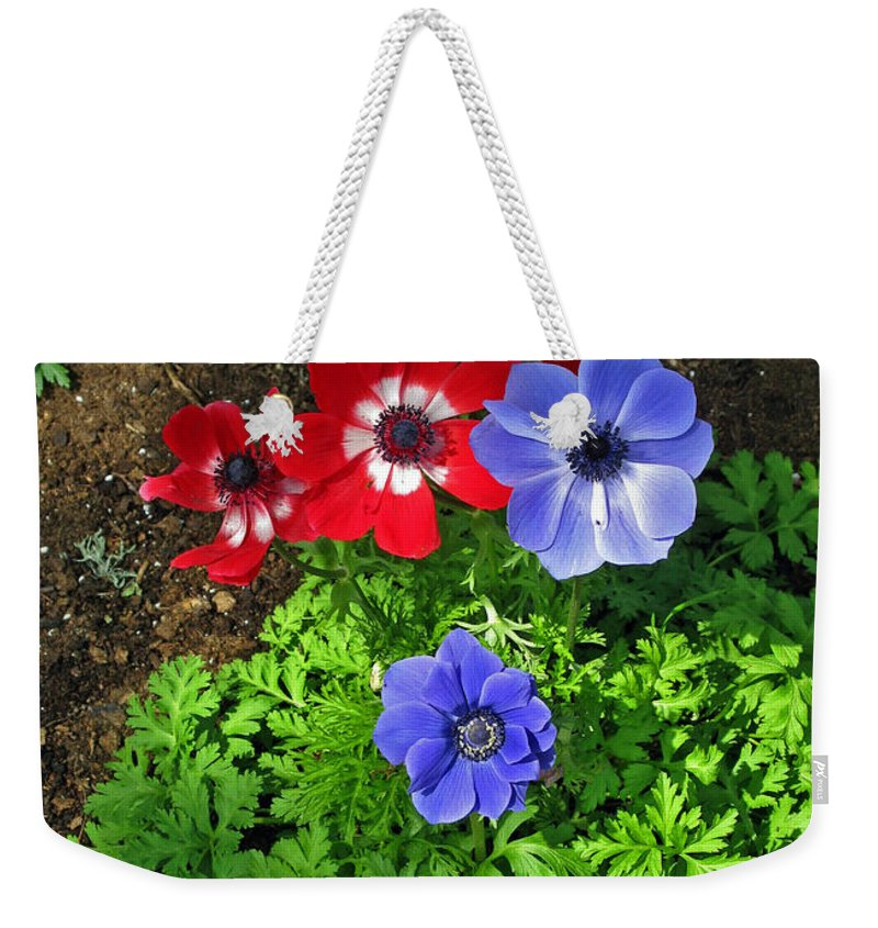 Anemone Weekender Tote Bag featuring the photograph Red And Blue Anemones by Ausra Huntington nee Paulauskaite