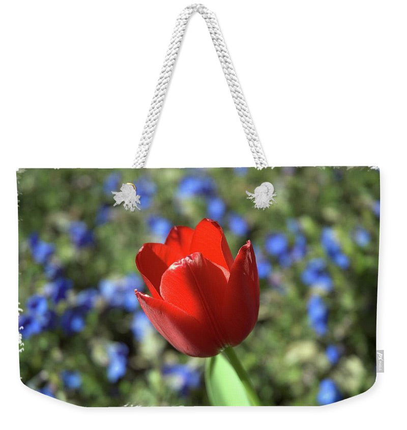 Flower Weekender Tote Bag featuring the photograph Red Baby by Arthur Fix