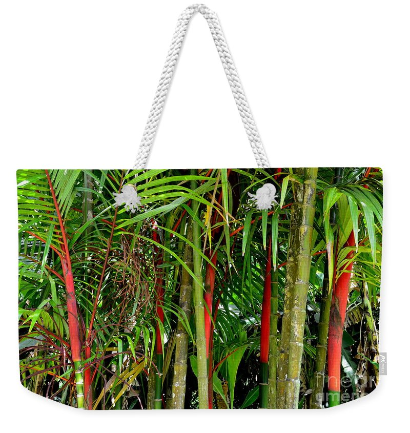 Bamboo Weekender Tote Bag featuring the photograph Red Bamboo by Mary Deal