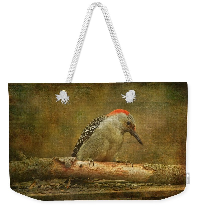 Animals Weekender Tote Bag featuring the photograph Red-bellied Woodpecker by Sue Capuano