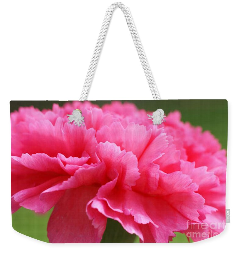 Carnation Weekender Tote Bag featuring the photograph Red Carnation by Carol Lynch
