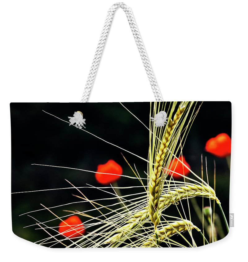 Red Corn Poppies Weekender Tote Bag featuring the photograph Red Corn Poppies by Heiko Koehrer-Wagner