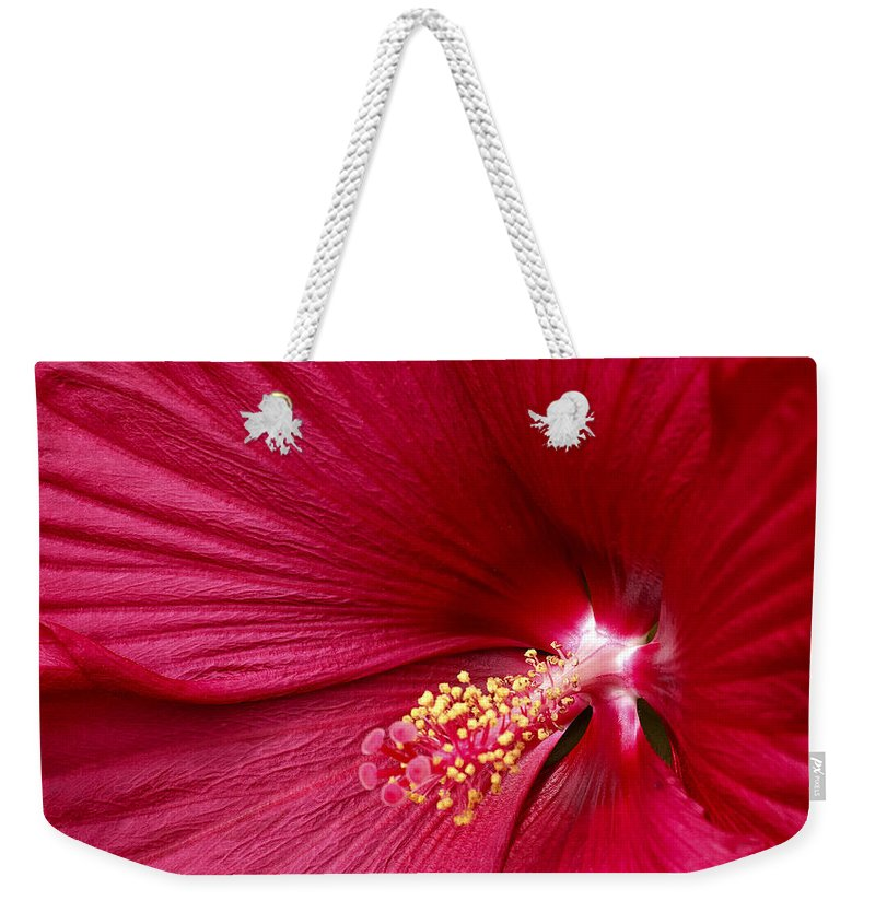Red Flower 2 Weekender Tote Bag featuring the photograph Red Flower 2 by Wes and Dotty Weber