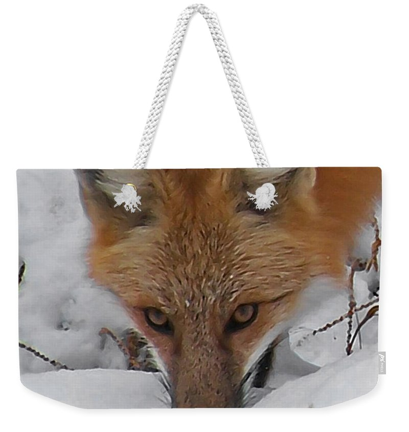 Animals Weekender Tote Bag featuring the digital art Red Fox Upclose by Ernie Echols