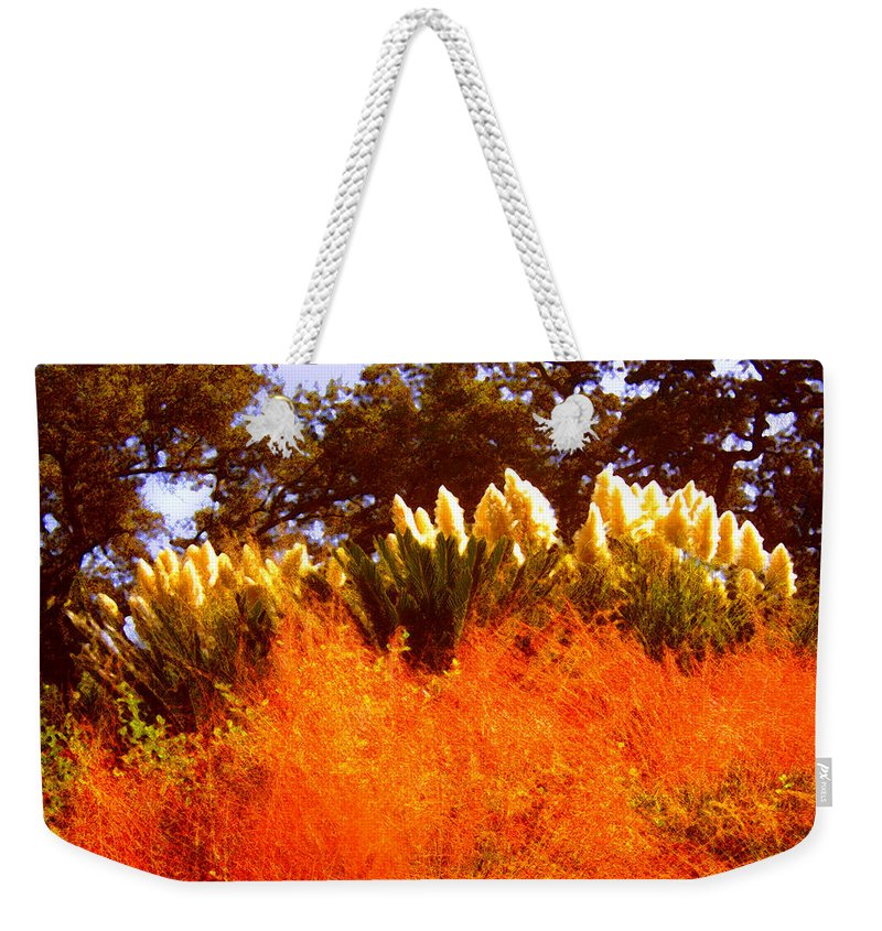 Landscapes Weekender Tote Bag featuring the painting Red Grass by Amy Vangsgard