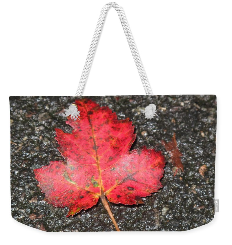 Leaves Weekender Tote Bag featuring the photograph Red Leaf On Pavement by Barbara McDevitt