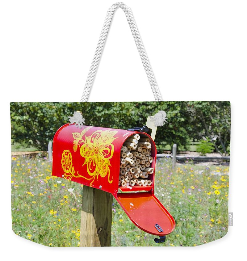 Red Mailbox Weekender Tote Bag featuring the painting Red Mailbox by Jeelan Clark