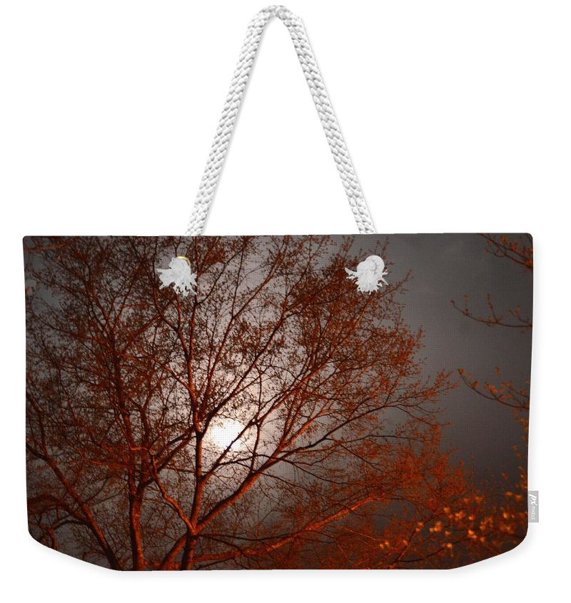 Red Oak At Sunrise Weekender Tote Bag featuring the photograph Red Oak At Sunrise by Maria Urso