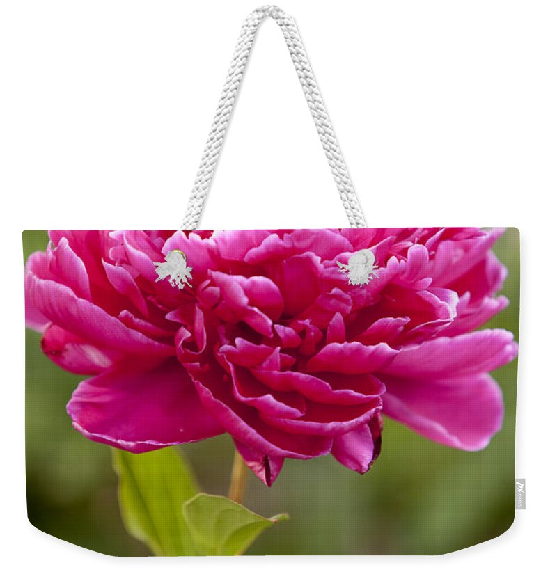Red Weekender Tote Bag featuring the photograph Red Peony by Brian Jannsen