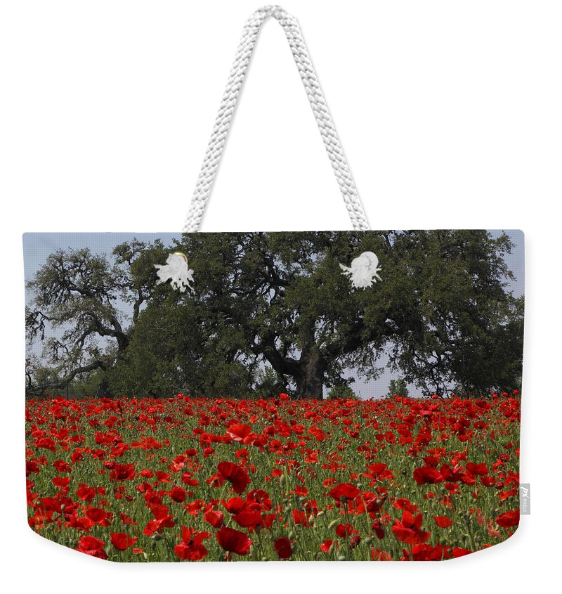 Texas Weekender Tote Bag featuring the photograph Red Poppy Field by Susan Rovira