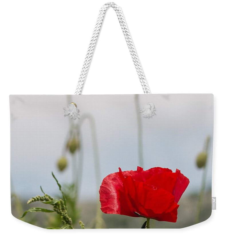 Bulgaria Weekender Tote Bag featuring the photograph Red Poppy by Jivko Nakev
