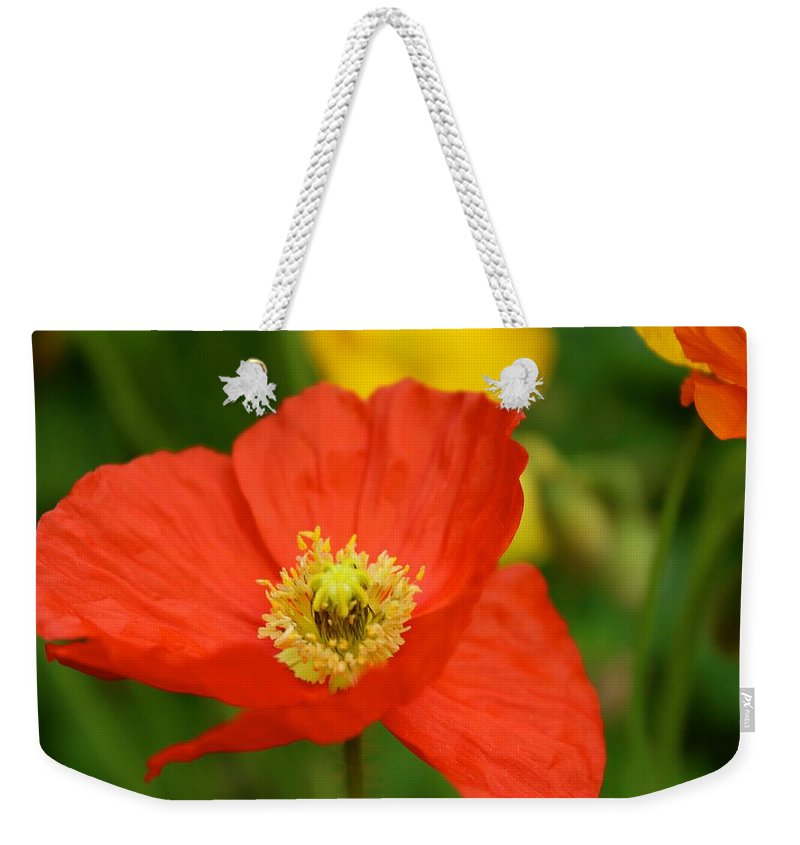 Poppy Weekender Tote Bag featuring the photograph Red Poppy by Tiffany Erdman