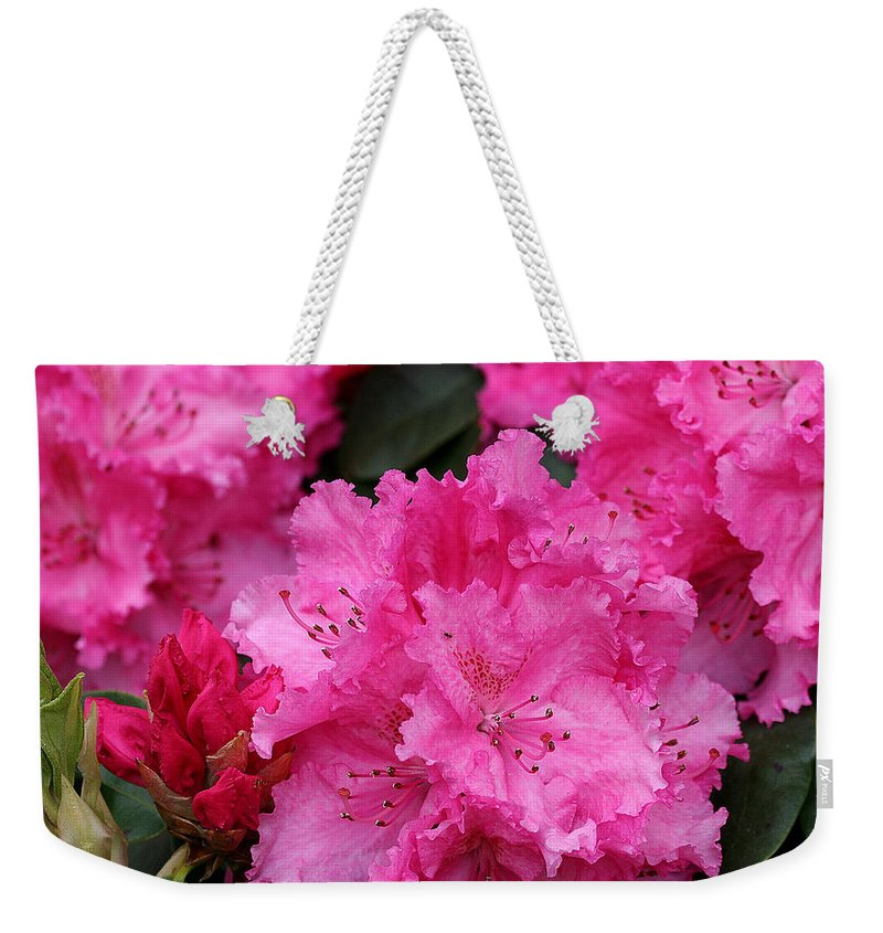 Rhodies Weekender Tote Bag featuring the photograph Red Rhododendrons by Chriss Pagani