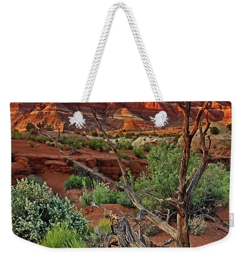 North America Weekender Tote Bag featuring the photograph Red Rock Butte And Juniper Snag Paria Canyon Utah by Dave Welling