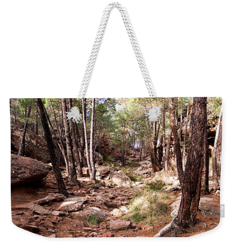 Red Rock Weekender Tote Bag featuring the photograph Red Rock Pine Forest by Weston Westmoreland