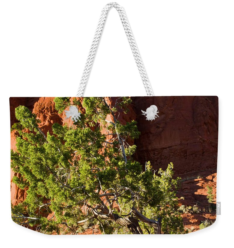 Red Weekender Tote Bag featuring the photograph Red Rocks And Tree 1 by Douglas Barnett