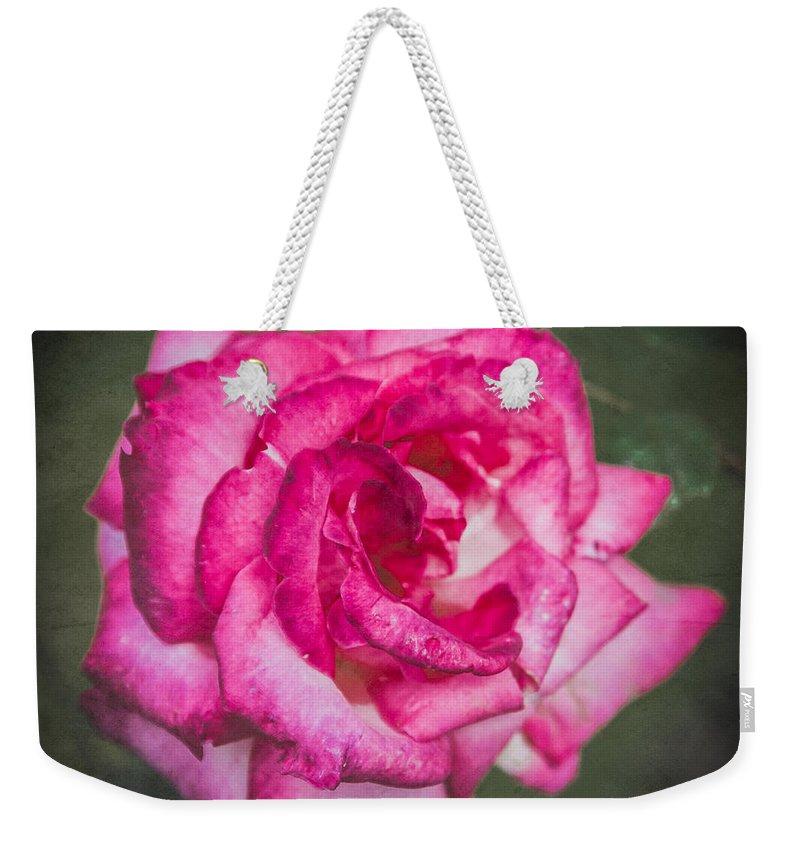 Bush Weekender Tote Bag featuring the photograph Red Rose by Mark Llewellyn