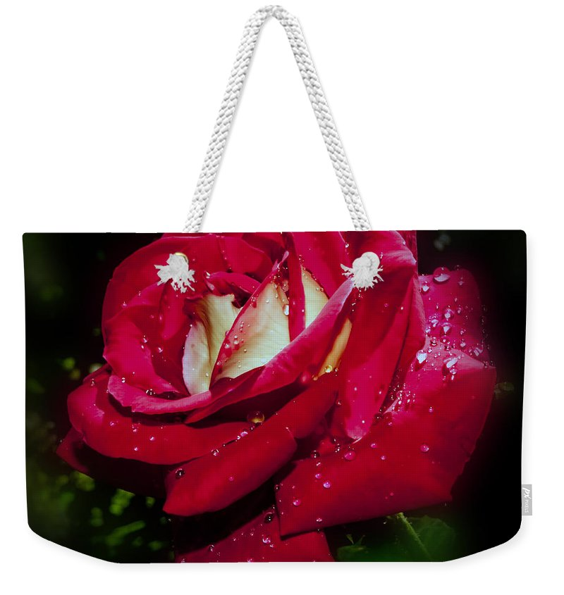 White Weekender Tote Bag featuring the photograph Red Rose With Water Drops by Alex Grichenko