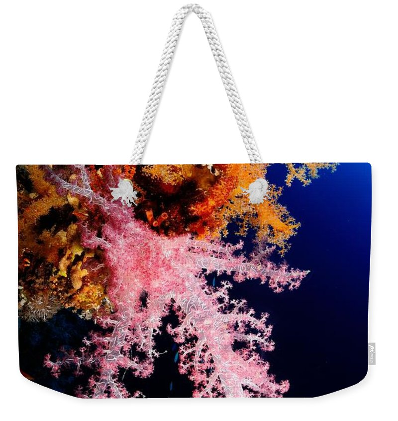 Underwater Weekender Tote Bag featuring the photograph Red Sea Coral by Iñigo Gutierrez Photo