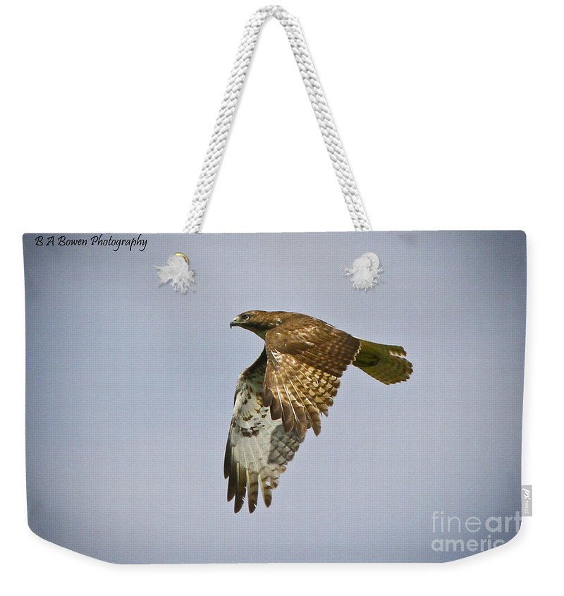 Red-shouldered Hawk Weekender Tote Bag featuring the photograph Red-shouldered Hawk Flyby by Barbara Bowen