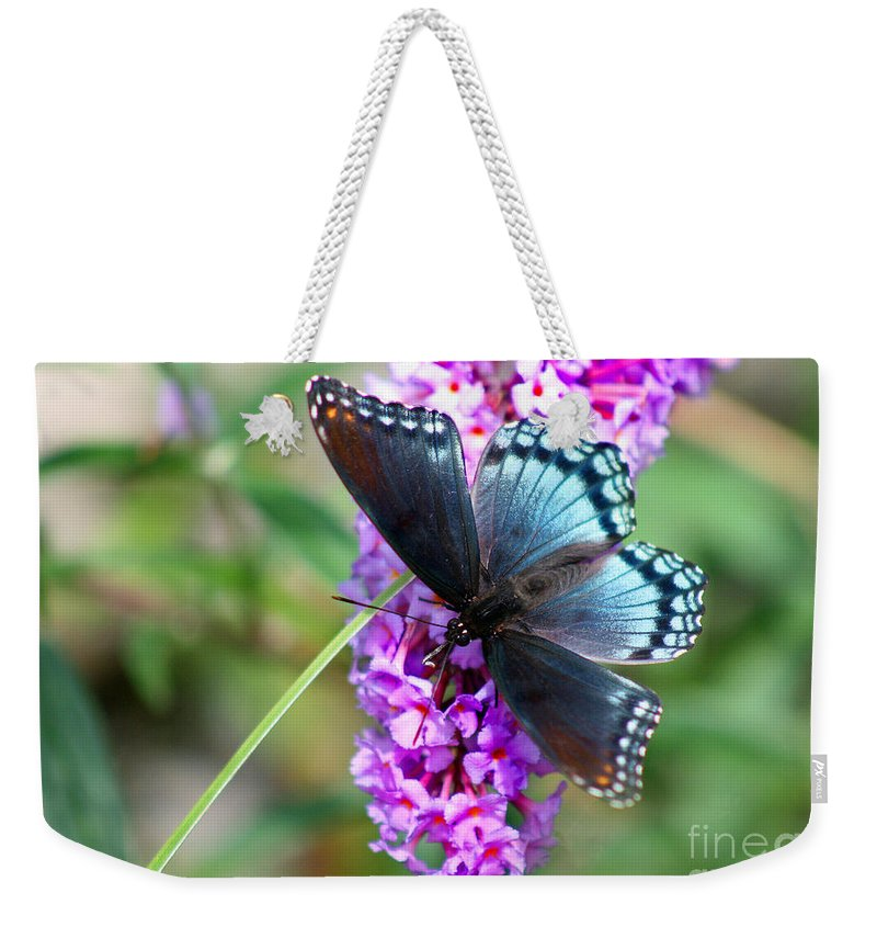 Butterfly Weekender Tote Bag featuring the photograph Red Spotted Purple Butterfly On Butterfly Bush by Karen Adams
