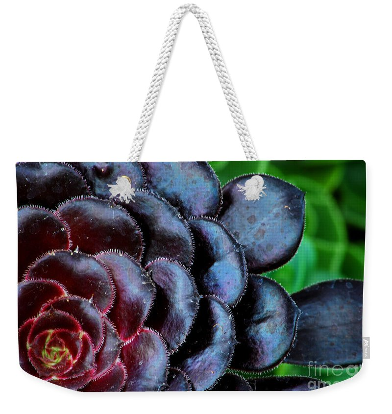 Succulent Weekender Tote Bag featuring the photograph Red Succulents by Nancy Mueller
