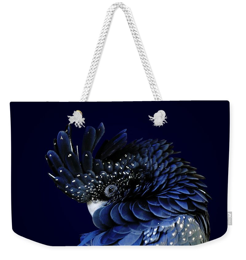 Fort Worth Weekender Tote Bag featuring the photograph Red-tailed Black Cockatoo by © Debi Dalio