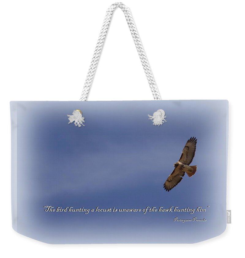Red-tailed Hawk Weekender Tote Bag featuring the photograph Red-tailed Hawk Card -bird by Travis Truelove