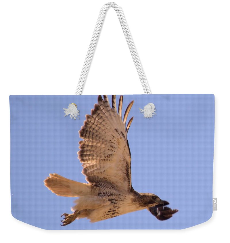 Hawk Weekender Tote Bag featuring the photograph Red Tailed Hawk by Bonfire Photography