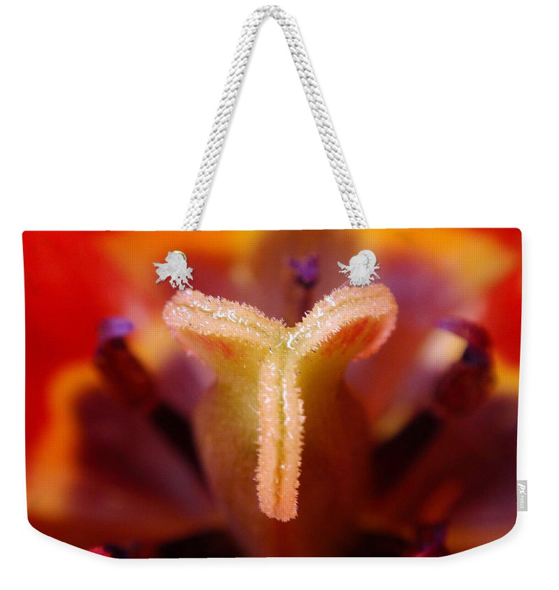 Tulip Weekender Tote Bag featuring the photograph Red Tulip Abstract by Rona Black