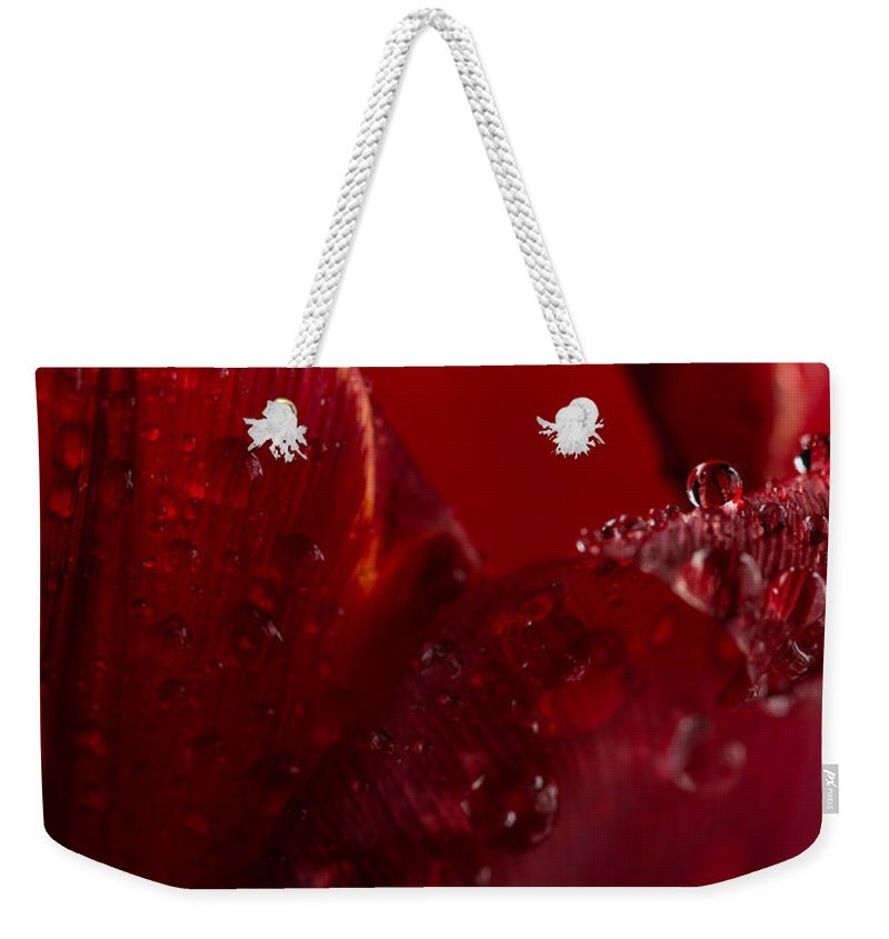Red Weekender Tote Bag featuring the photograph Red Tulip by Steve Gadomski
