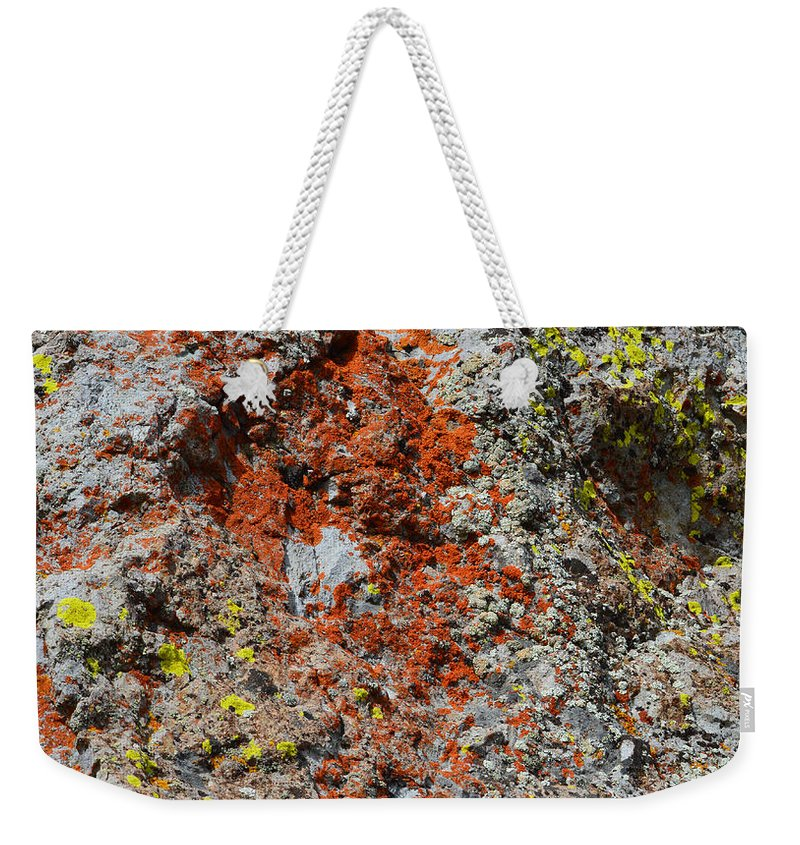 Nature Weekender Tote Bag featuring the photograph Red With Green by Brent Dolliver