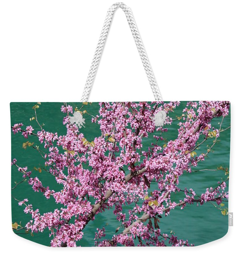 Redbud Weekender Tote Bag featuring the photograph Redbuds Over San Antonio River by Carol Groenen