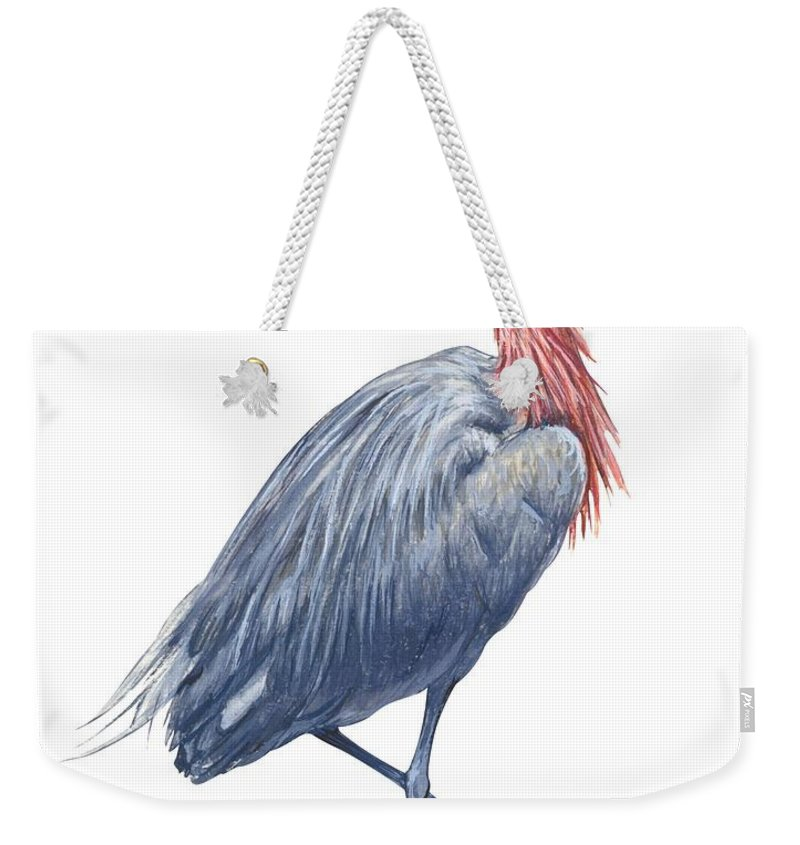 No People; Vertical; Side View; Full Length; White Background; One Animal; Wildlife; Close Up; Zoology; Illustration And Painting; Bird; Beak; Feather; Standing On One Leg; Reddish Egret; Egretta Rufescens Weekender Tote Bag featuring the drawing Reddish Egret by Anonymous