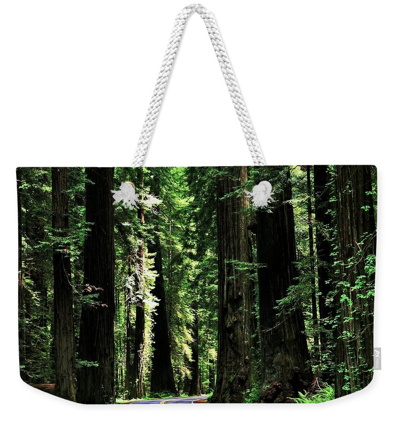 California Weekender Tote Bag featuring the photograph Redwood Highway by Benjamin Yeager