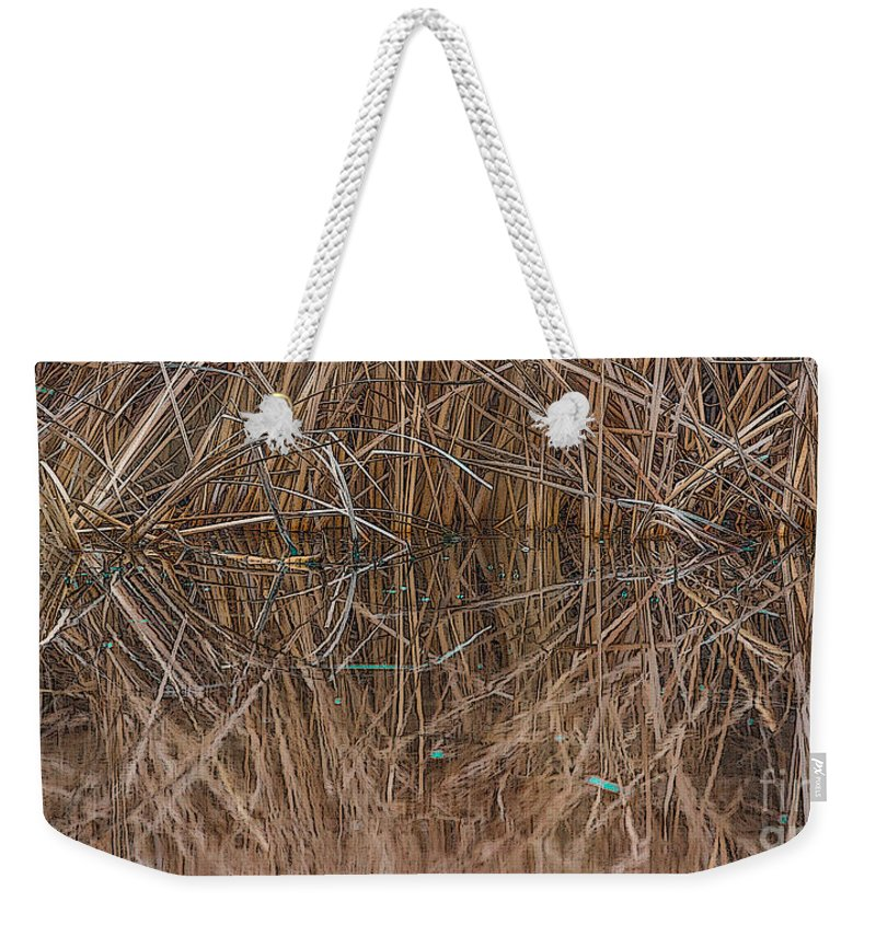 Phragmites Australis Weekender Tote Bag featuring the photograph Reed Water Reflection by Jivko Nakev