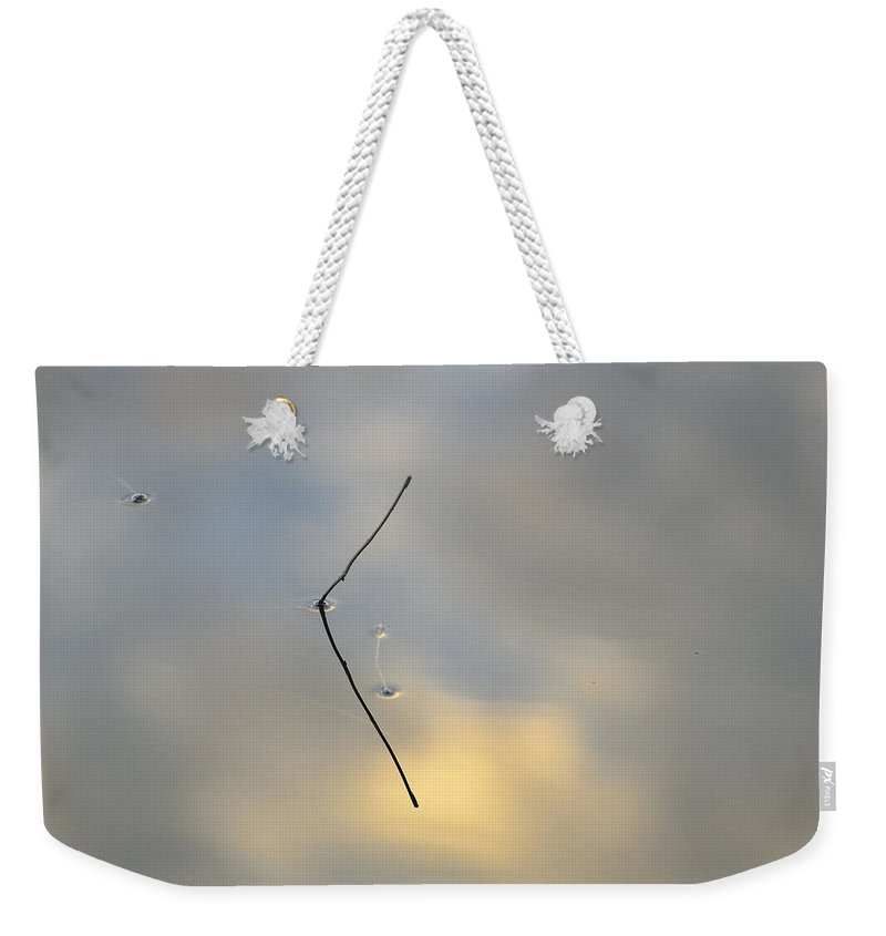 Sunrise Weekender Tote Bag featuring the photograph Reflections In Nature by Guido Montanes Castillo