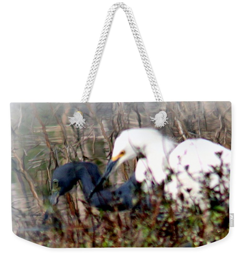 Reflections Of Different Colors Weekender Tote Bag featuring the photograph Reflections Of Different Colors - Living In Harmony by Travis Truelove