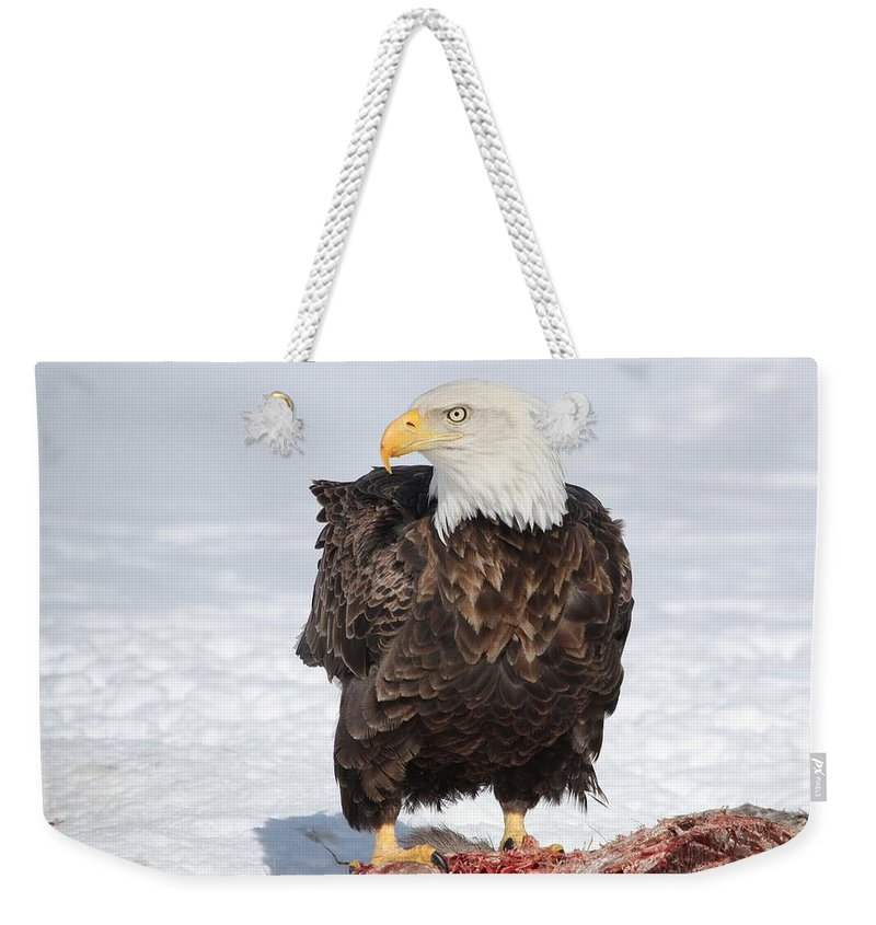 Bald Eagle Weekender Tote Bag featuring the photograph Regal Eagle by Teresa McGill