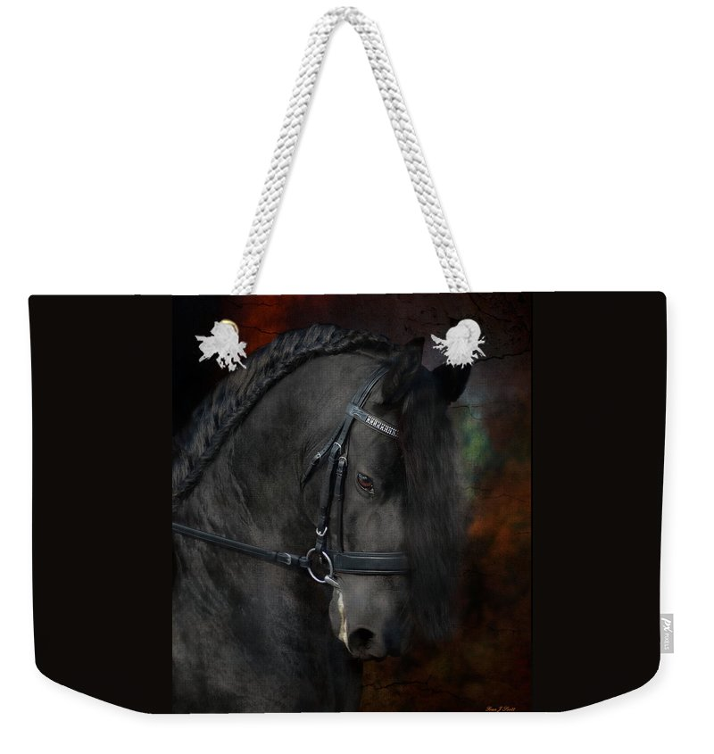 Horses Weekender Tote Bag featuring the photograph Rembrandt by Fran J Scott